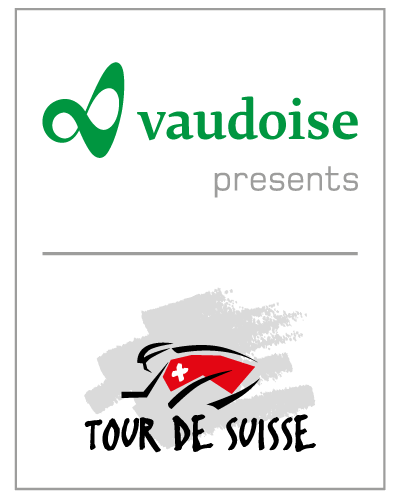 [Immagine: suisse-logo.png]